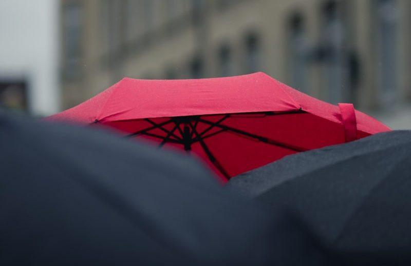 An image of a red umbrella in a sea of black umbrellas